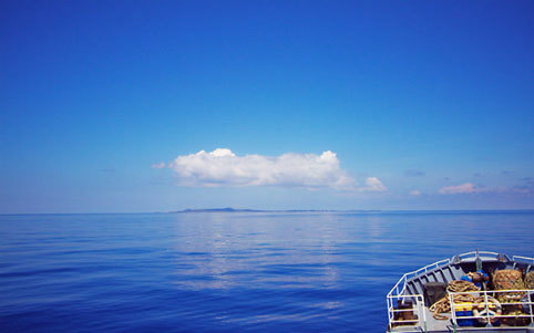Ngây ngất trước vẻ hoang sơ biển đảo Phú Quý