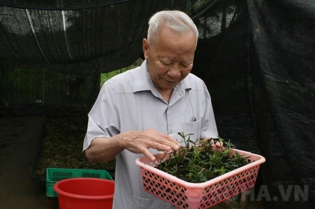 Phó Thủ tướng, Nguyễn Công Tạn