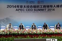 Chủ tịch nước phát biểu tại Thượng đỉnh doanh nghiệp APEC