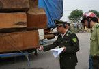Phạt hơn 250 triệu với đoàn xe siêu trọng chở gỗ từ Lào