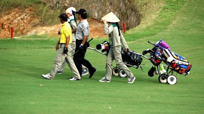 Golf, cuốc đất, trồng khoai, Phan Thế Hải, hội nhập, Việt Nam, nghị sĩ, chuyên trách