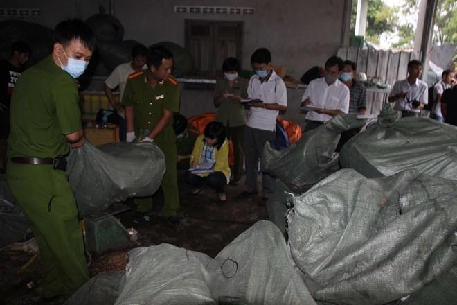 Đại gia mỹ nghệ Nha Trang triệt hạ 1.000 con rùa biển