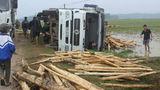 Xe chở gỗ lật xuống ruộng, 3 người thoát chết