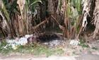 Kẻ giết người tình, ôm xác ngủ ở Sài Gòn chịu mức án nào?