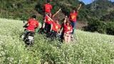 Dân mạng dậy sóng vì phượt thủ chạy xe máy tàn phá cánh đồng hoa cải