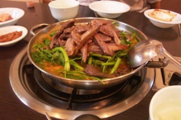 Ăn thịt chó: Nhiều nước giống Việt Nam