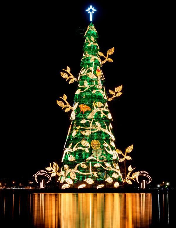 8 cây thông Giáng Sinh kỷ lục trên thế giới