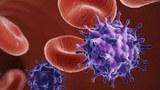 Virus HIV đang suy yếu