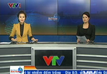 VTV, xử phạt