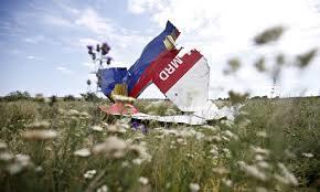 Gia đình nạn nhân MH17 yêu cầu LHQ vào cuộc
