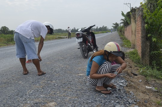 Trà Vinh: Dân đổ ra đường nhặt 'vàng'