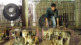 Về làng buôn chó lớn nhất xứ Thanh