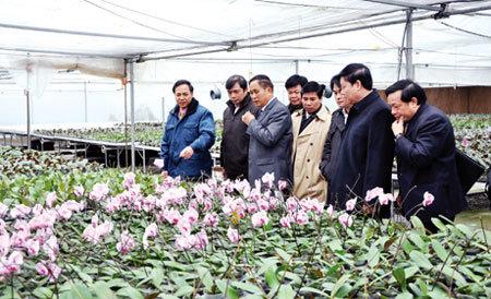 2015, Quảng Ninh 'về đích' nông thôn mới
