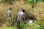 Phát hiện xác chết nghi bị đốt trong bụi cỏ
