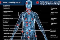 Đa số ca mắc ung thư là do thiếu... may mắn?
