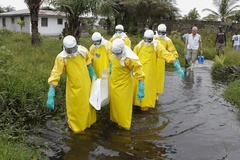 Hơn 8.000 người chết vì đại dịch Ebola