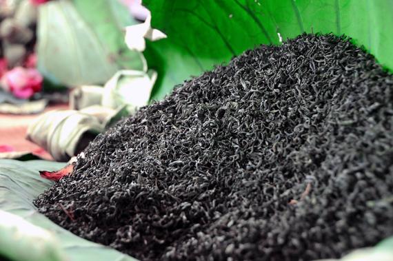 Tết đại gia: Thưởng trà sen chục triệu, ngắm siêu cây 5 tỷ