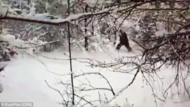Bất ngờ bắt gặp 'người tuyết Yeti' tại Nga