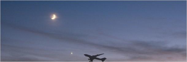 Bị tố quấy rối tình dục, phi công đánh tiếp viên