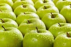 Ăn táo Mỹ nhiễm khuẩn chết người
