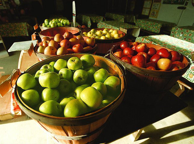 Giữ lại táo nhập từ Mỹ, cấm bán ra thị trường