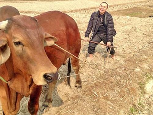 NSƯT Xuân Hinh: 'Tuổi này phải lấy thêm vợ nữa thì mệt lắm