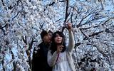 """Chen chân """"tự sướng"""" bằng smartphone ở vườn hoa"""