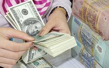 Việt kiều Úc bị lừa mất 7 triệu đô