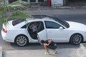 Angela Phương Trinh 'méo mặt' vì gặp sự cố với xe tiền tỷ