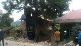 Va chạm xe máy, xế hộp treo ngược lên cây, 3 người chết