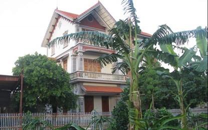 trồng-chuối, Nguyễn-Văn-Thu, Quảng-Ninh, nông-dân, tỷ-phú, biệt-thự, ôtô, tiền-tỷ