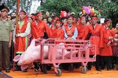 Sẽ thay đổi nghi thức chém lợn