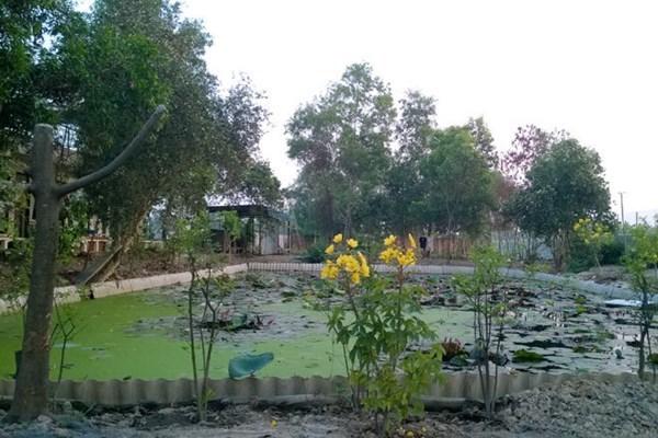 Nhà vườn ven đô rộng 7.000m2 của ca sĩ Ánh Tuyết