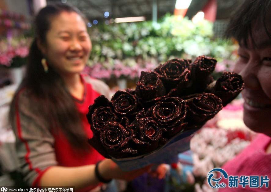 Những bông hồng độc và lạ cho ngày Valentine