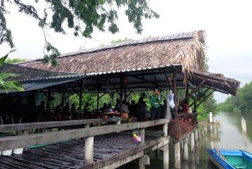 Đón Tây về làng: Nông dân kiếm lãi gấp 10 trồng lúa