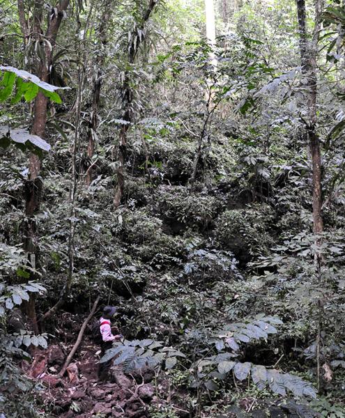 Độn thổ hang núi lửa dài, đẹp nhất Đông Nam Á