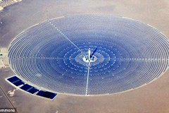 Cánh đồng năng lượng Mặt trời thiêu chết chim khi chúng bay qua