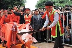 Người dân sẽ quyết định giữ hay không lễ hội chém lợn
