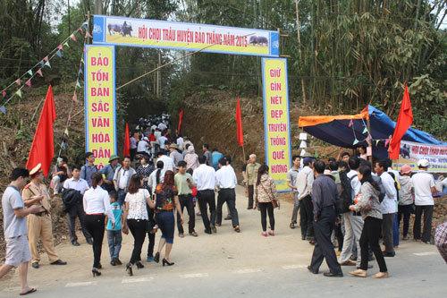 Chật kín người xem Lễ hội chọi trâu đầu tiên ở Lào Cai