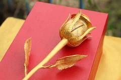 Đại gia Royce, Phantom tặng bạn gái bông hồng vàng ròng 250 triệu