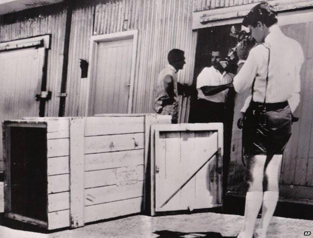 Chui vào hộp gỗ hàng hóa để trốn vé máy bay