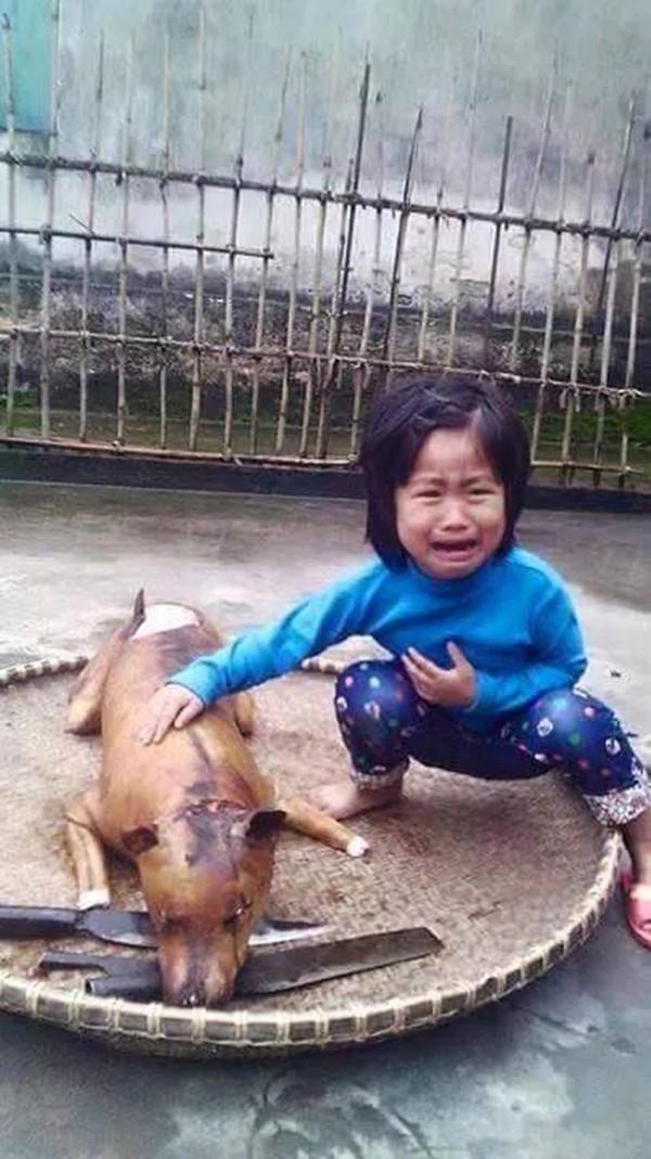 Bức ảnh em bé khóc khi chú chó bị thui khiến hàng nghìn người tranh cãi