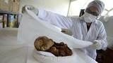 Phát hiện xác ướp trẻ sơ sinh 1.000 năm tuổi còn nguyên vẹn