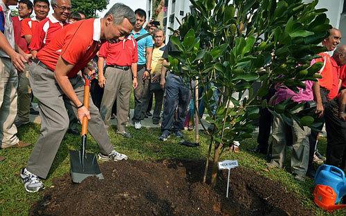 Vì sao với Lý Quang Diệu, cây xanh là lợi thế quốc gia?