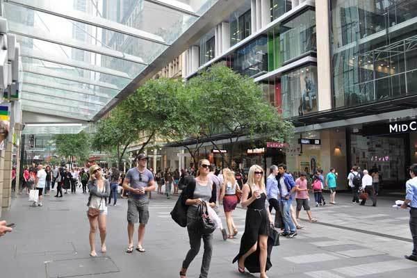 Choáng với chính sách tặng cây cho dân của Sydney
