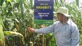Kỳ III: Bài học nào cho người tiêu dùng Việt Nam?