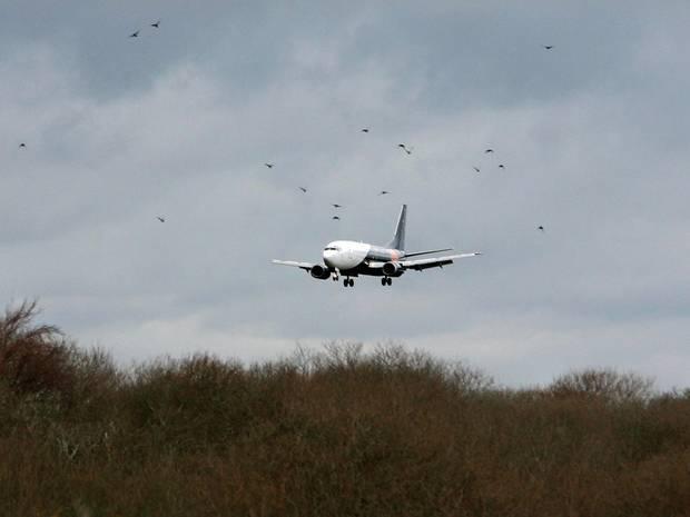 máy bay, hạ cánh khẩn cấp, hỏng động cơ
