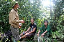 Hổ dữ trả thù tàn khốc ở Tuyên Quang