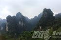 Phát hiện hổ ở Tuyên Quang: Hổ cướp xác voọc trước mắt thợ săn