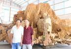 Gốc cây cổ trả giá 30 tỷ không bán ở miền Tây